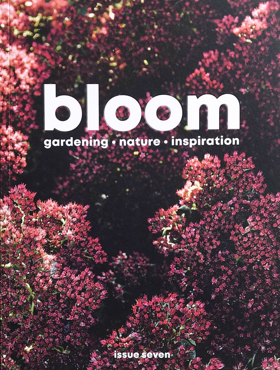 Bloom – Issue 7