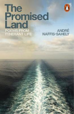 Promised Land, The: Poems from Itinerant Life