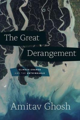 Great Derangement, The: Climate Change and the Unthinkable