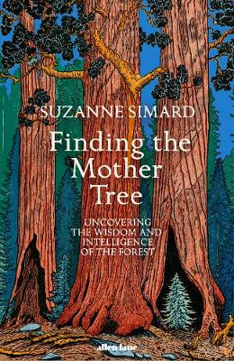 Finding the Mother Tree: Uncovering the Wisdom and Intelligence of the Forest