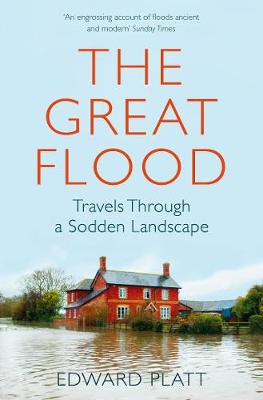 Great Flood, The: Travels Through a Sodden Landscape
