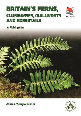 Britain's Ferns: A Field Guide to the Clubmosses, Quillworts, Horsetails and Ferns of Great Britain and Ireland