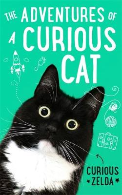 Adventures of a Curious Cat, The: wit and wisdom from Curious Zelda, purrfect for cats and their humans