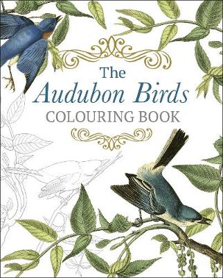 Audubon Birds Colouring Book, The