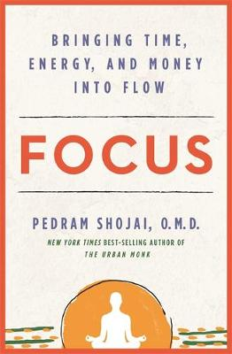 Focus: Bringing Time, Energy, and Money into Flow