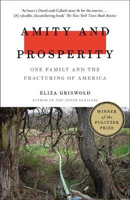 Amity and Prosperity: One Family and the Fracturing of Ameri...