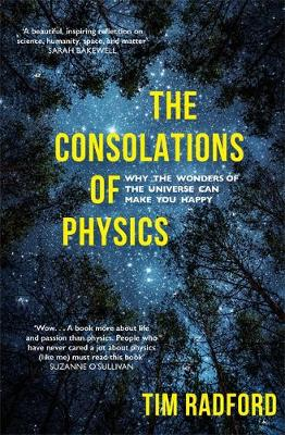 Consolations of Physics, The: Why the Wonders of the Univers...