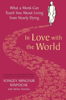 In Love with the World: What a Monk Can Teach You About Livi...
