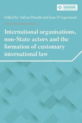 International Organisations, Non-State Actors, and the Forma...