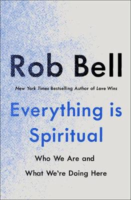 Everything is Spiritual: A Brief Guide to Who We Are and Wha...