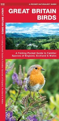 Great Britain Birds: A Folding Pocket Guide to Familiar Species of England, Scotland & Wales