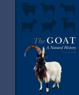 Goat, The