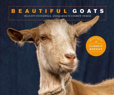 Beautiful Goats: Portraits of champion breeds