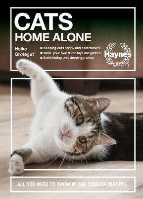 Cats Home Alone: All you need to know in one concise manual