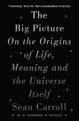 Big Picture, The: On the Origins of Life, Meaning, and the U...