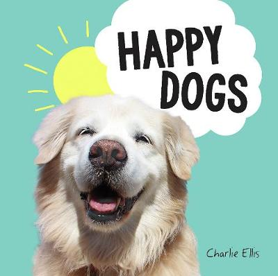 Happy Dogs: Photos of the Happiest Pups and Doggos in the Wo...