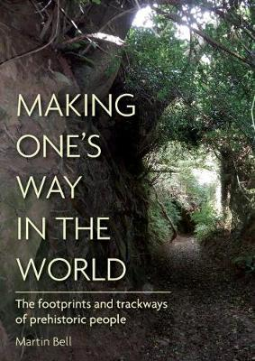 Making One's Way in the World: The Footprints and Trac...