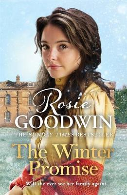 Winter Promise, The: From the Sunday Times bestselling autho...