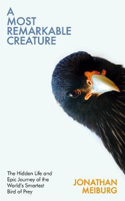 Most Remarkable Creature, A: The Hidden Life and Epic Journey of the World's Smartest Bird of Prey