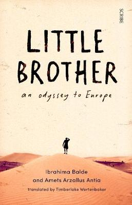 Little Brother: an odyssey to Europe
