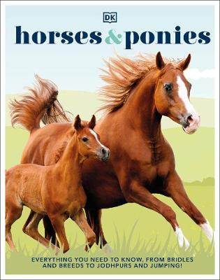 Horses & Ponies: Everything You Need to Know, From Bridl...