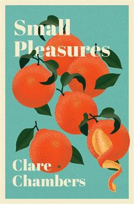 Small Pleasures: Longlisted for the Women's Prize for ...