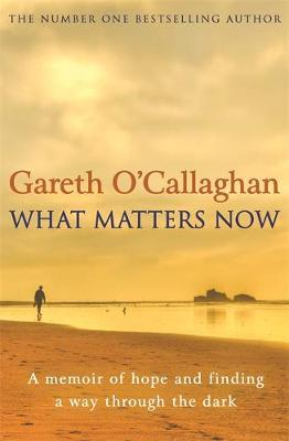 What Matters Now: A Memoir of Hope and Finding a Way Through...