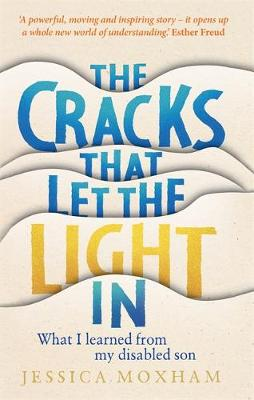 Cracks that Let the Light In, The: What I learned from my di...