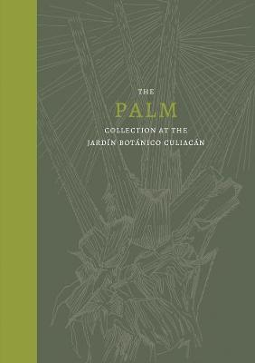 Palm, The: Collection at the Jardin Botanico Culiacan