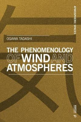 Phenomenology of Wind and Atmospheres, The