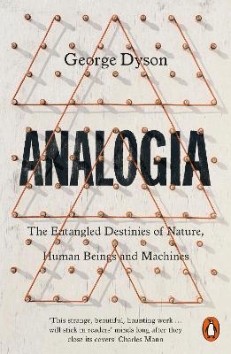 Analogia: The Entangled Destinies of Nature, Human Beings and Machines