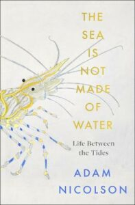 Sea is Not Made of Water, The: Life Between the Tides