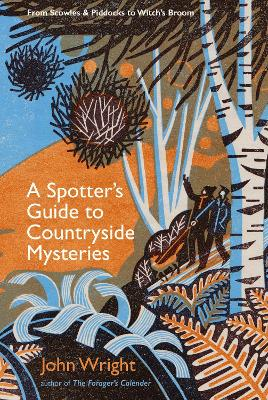 Spotter's Guide to Countryside Mysteries, A: From Piddocks and Lynchets to Witch's Broom