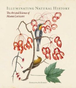 Illuminating Natural History – The Art and Science of Mark Catesby