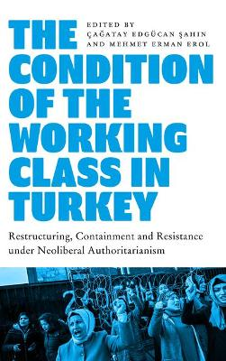 Condition of the Working Class in Turkey, The: Labour under ...