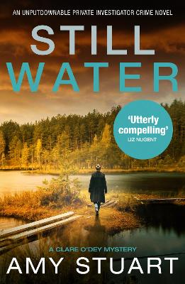 Still Water: An absolutely gripping private investigator cri...